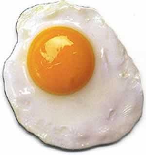 El maravilloso mundo de los huevos